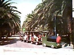 S SAN BENEDETTO DEL TRONTO  TRENINO TRA LEPALME V1971  EA8392 - Ascoli Piceno