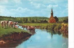 21145 Luxuriante Normandie France: Vallée D'Auge Rives De La Touques -EKB 442 Yvon -vache Normande Eglise - Vaches