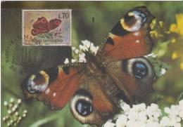 """Inachis Io Tagpfauenauge  """" MAXIMUM  CARD """" - Cartoline"""
