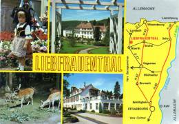 Liebrauenthal Prés De Woerth B/Rhin Multivues - France