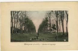 MONTGERON (S.-et-O.) -- AVENUE  DE  LAGRANGE - Montgeron