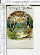 CHROMO - MAGASIN - AUX DEUX PASSAGES - NOUVEAUTES - LYON  -  Etang - Autres