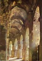 Francia - Cartolina NIMES, LES ARENES ROMAINES (Galerie Circulaire Inferieure) - PERFETTA E65 - Nîmes