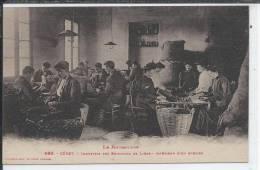 CERET - Le Roussillon -  Industrie Des Bouchons De Liège - Intérieur D'un Atelier - Ceret