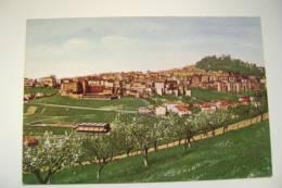FERMO   MARCHE - ASCOLI PICENO  NON   VIAGGIATA  COME DA FOTO IMMAGINE OPACA - Ascoli Piceno