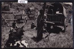 Madagascar - Mananjary (envoyée De), Vers 1957 : Campement De Charrettes (-507) - Madagascar