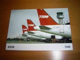 CPM ALLEMAGNE - AIRBUS A319 TAM Linhas Aéreas Brazil - PORT GRATUIT - 1946-....: Moderne
