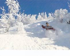 Cp , SPORT D´HIVER , Ski , Joies De L´Hiver , Dans La Poudreuse... - Sports D'hiver