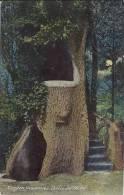 TIEGHEM - Anzegem - La Nuit - La Chaire De Vérité - Anzegem