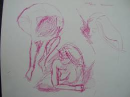 Etude Encre Violette Nus Feminins   24cm X 32cm  Recto Verso - Drawings