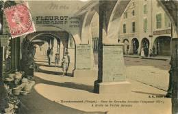 88 REMIREMONT SOUS LES GRANDES ARCADES FLEUROT PORCELAINES  EDITION BF 1908 - Remiremont