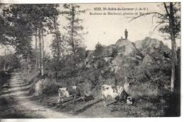 Saint Aubin Du Cormier : Rochers De Bécherel Chemin De Bel Air (gardeuse De Vaches) - France