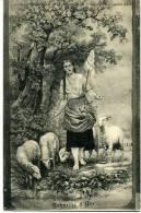 789   Vaucouleurs         Lot De 4 Cartes  Sur Jeanne D'ARC - Altri Comuni