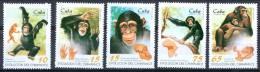 Cuba 1996 Evolution Of The Chimpanzee MNH** - Lot. 1372 - Chimpanzés