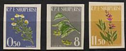 ALBANIE 1962 - Plantes Medicinales - Série Neuve Non Dentelée Sans Charniere (Yver 573/75) - Albania