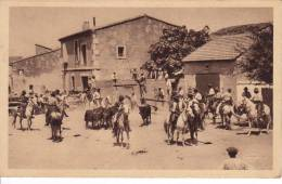 """SAINTES MARIES DE LA MER -  """"En Provence """"Bandido"""" - Lâcher De Taureaux Après La Course Aux Saintes-Maries-de-la-Mer"""" - Saintes Maries De La Mer"""