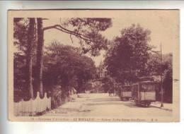 33.- Environs D' Arcachon .- LE MOULEAU .- Avenue Notre-Dame Des Passes - Arcachon