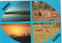 Afrique- JAMBO KENIA  Popular Scenes   (muti Vues)  Pas De Timbre (timbre Décollé) = Voir Scan *PRIX FIXE - Kenya