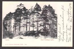 SN83) Seffle - Olof Trätäljas Kulle - 1902 - Sweden