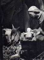 Vierge, Enfant, Creche, Photo Georges Le Rouge - Vergine Maria E Madonne