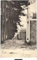 13502g MOLL - De Vijftien Kapellekens - 1903 - Mol