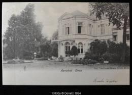 13830g AERSCHOT - Elzen - 1904 - Aarschot