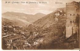 Nº39 POSTAL DE ESPAÑA DE GRANADA - VISTA DEL GENERALITE Y RIO DAURO - EDICION REYES - Granada