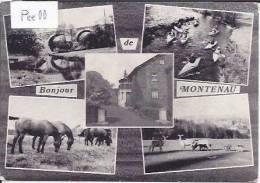 MONTENAU : MULTICARTE UN BONJOUR DE MONTENAU - Amblève - Amel