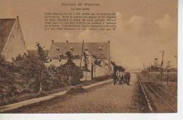 LA HAIE SAINTE   WATERLOO  BELGIQUE   OHL - Waterloo