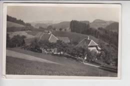 BÖHMEN & MÄHREN, ROTHENBAUM - CERVENE DREVO, Nach Dem 2.Weltkrieg Zerstört, Photo-AK - Sudeten