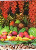 Lote PEP342, Colombia, Postal, Postcard, Antioquia, Venta De Frutas, Fruits - Colombia