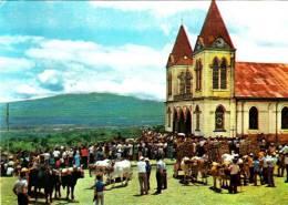 Costa Rica San Antonio De Escazu - Fiesra San Isidro Labrador Attelage Église - Circulée - Costa Rica