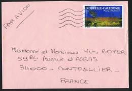 1993  Lettre Avion Pour La France  Région De Malabou Yv PA 303 Seul - Cartas