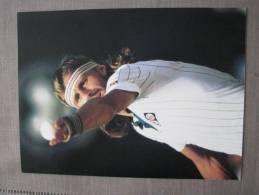 Björn BORG En 1980 à Wimbledon - Reproductions