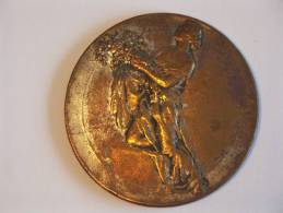 Medaille Les Journées Coloniales De Belgique - En Témoignage De Gratitude Congo - Belgique