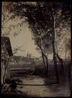 Ancienne GRANDE PHOTO Originale AVIGNON Vue Générale Les Vignes Vers 1900 - Lugares