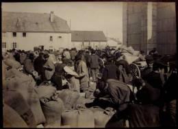 Ancienne GRANDE PHOTO Originale FOIRE AUX CEREALES Marché Graines Vers 1900 PROVENCE DROME - Profesiones
