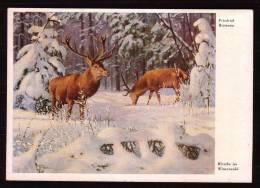 """REIMANN, Friedrich - """" Hirsche Im Winterwald """" -  NON Circulé - Not Circulated - Nicht Gelaufen. - Peintures & Tableaux"""