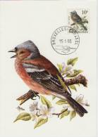 MC  BUZIN  Bird/ Oiseau  Pinson Des Arbres  / Vink / Cfringilla Coelebs / Chaffinch / Buchfink   1990 - Sperlingsvögel & Singvögel