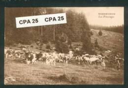 25 - Doubs - Bonnevaux  -Les Paturages - Vaches Montbéliardes - Troupeau - Sin Clasificación