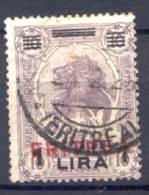 Eritrea 1924 Sass.86 Usato/Used VF/F - Eritrea
