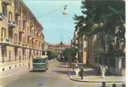 TA054 - Taranto - Via Federico Di Palma - Marinaio - Autobus Pullman - Taranto