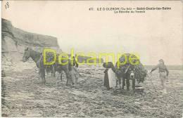 CPA 17 - Ile D'Oléron - Saint Denis Les Bains - La Récolte Du Varech - Ile D'Oléron