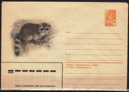 USSR 1981  Postal Stationery Cover Wild Animals Raccoon Raton - Francobolli