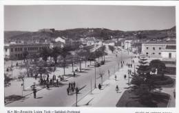B2247 * PORTUGAL. SETÚBAL. Avenida Luisa Tody. Postal Fotográfico. Photographic Postcard. - Setúbal
