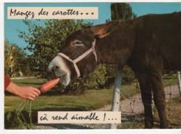Carte Ane Et Carotte - Francia