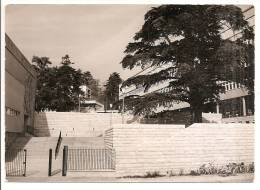 Isère - 38 - Voiron Lycée Municipal Mixte Av. Edouard Herriot , Style Carte Photo - Voiron