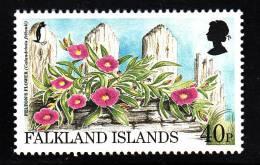 Falkland Islands MNH Scott #688 40p Felton's Flower (Calandrinia Feltonii) - Endangered Species - Falkland
