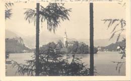 BLED RESIDENCE DU ROI DE YOUGOSLAVIE CPA CIRCA 1930 DOS DIVISE - Joegoslavië
