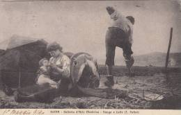1914 - ROMA - GALLERIA D'ARTE MODERNA  VANGA E LATTE DEL PATINI - Paintings